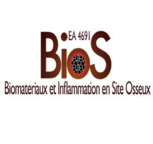 Biomatériaux et Inflammation en site osseux (BIOS)