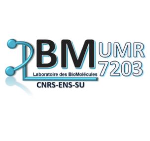 Laboratoire des Biomolécules (LBM)