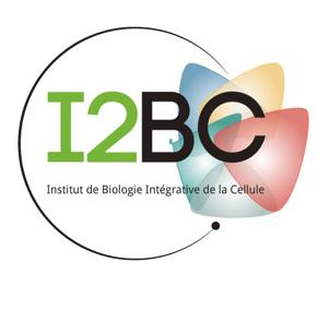 Microbiologie Moléculaire des Actinomycètes